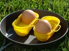 Egg Box (2 or 6 Eggs)